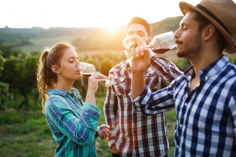 natural wine tasting