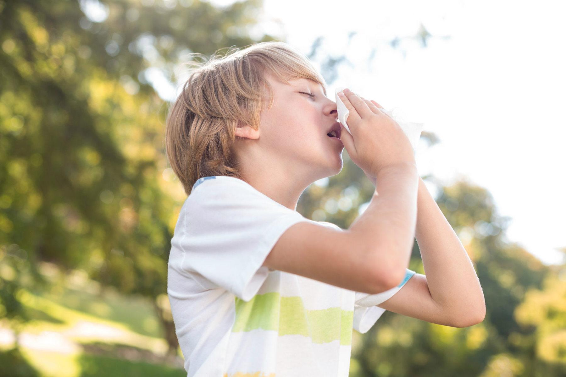 sneezing kid Antihistamine