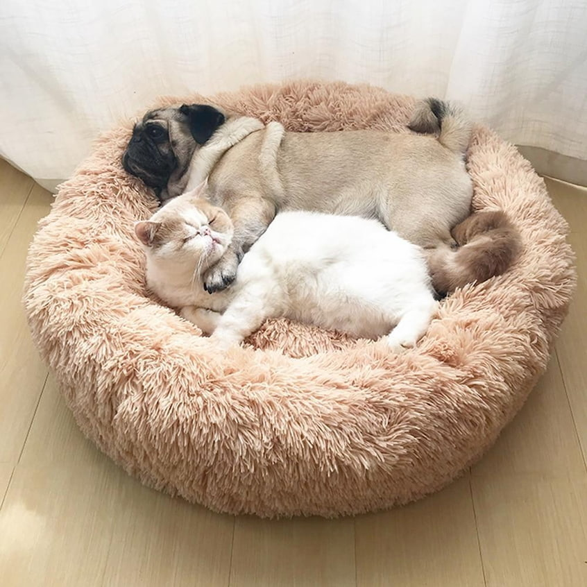 dog and cat laying in cuddler bed